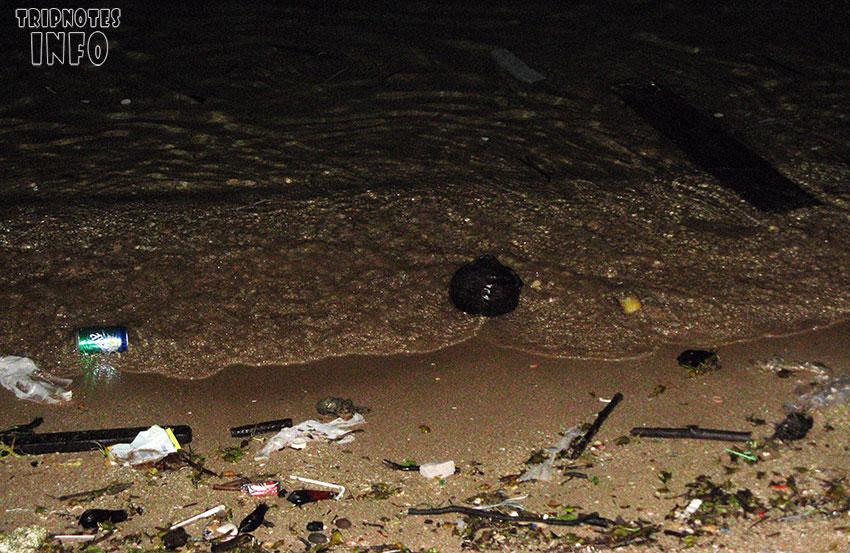 грязный пляж